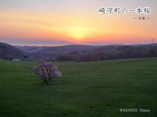 もうすぐ桜の季節♪